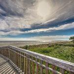 16 SURF SCOTER - SEA PINES - HILTON HEAD